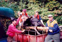 2000-  Le groupe complet avec l'orignal