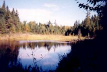 2001-  La fameuse baie du Quille