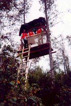 2001-  La cache à Louis-Philippe