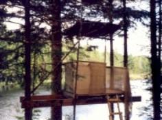 2002-  Mirador