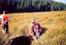 2002-  Le chasseur et sa réussite