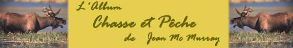 logoalbum.jpg (19380 octets)